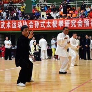 孙剑云 太极拳 石景山体育馆 北京市