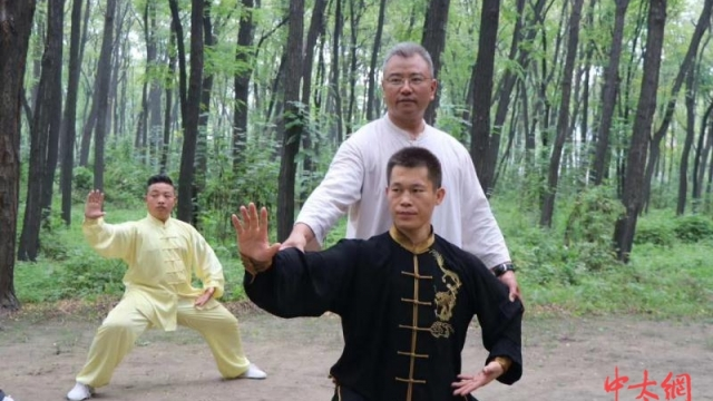 槐园太极拳第三代传人楚利涛—大道槐园之金刚捣锥