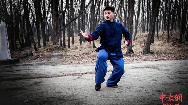张丽光:槐园太极拳的修炼体系之套路四部曲